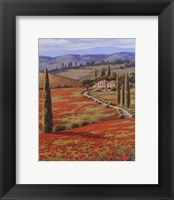 Red Poppy Field Framed Print