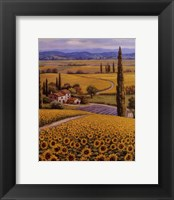 Framed Sunflower Field