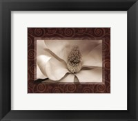 Magnolia Window I Framed Print