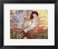 Le Rooster II Framed Print