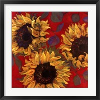 Sunflower I Framed Print