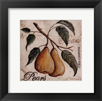 Fruit from the Branch II Framed Print