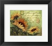 Sunflowers On Green Framed Print