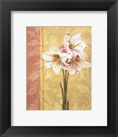Flower Bouquet II Framed Print