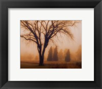 Whisper of Dawn Framed Print