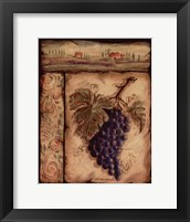 Grapo II Framed Print
