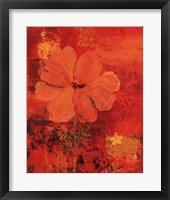 Framed Marigolds III