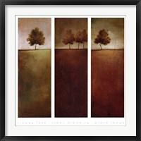 Framed Trees Dreaming