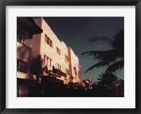 Black Palms Framed Print