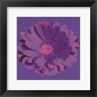 Framed Flower III