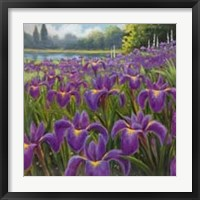 Gardenscape One Framed Print