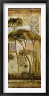 Framed Italian Arbor II