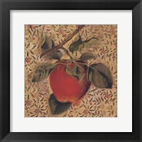 Fruit Panel One Framed Print