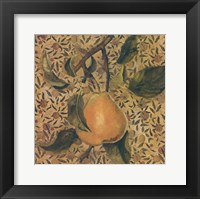 Fruit Panel Two Framed Print
