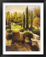 Framed In the Cypress Garden