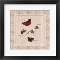 Framed Papilio I