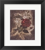Framed Vintage Rose II (Sm)