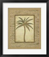 Framed Date Palm