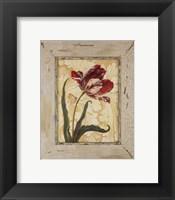 Framed Antique Botanicals VI