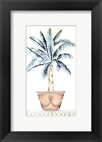 Framed Palm Topiary II