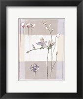 Framed Impression Florale II
