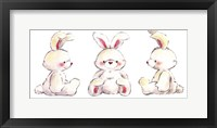 Rabbits Framed Print