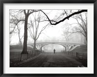 Framed Gothic Bridge, Cental Park, NYC