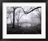Framed Gothic Bridge, Central Park, NYC