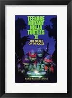 Framed Teenage Mutant Ninja Turtles 2