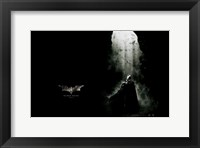 Batman Begins with Bats Framed Print