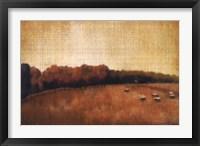 Open Range II Framed Print