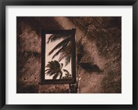Framed Palm View II