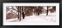 Framed First Snow I