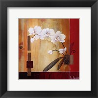 Orchid Lines II Framed Print