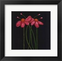 Petite Rose Framed Print