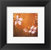 Framed Garden Delights III