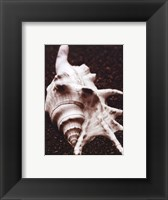 Framed Sea Gallery I