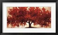 Spreading Crimson Framed Print