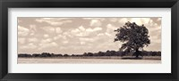 Out In Right Field Framed Print