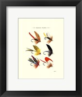 Bass Flies I Framed Print