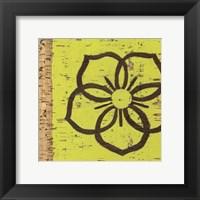 Framed Key Lime Rosette I