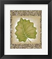 Framed Exotic Palm Leaf I