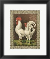 Framed Cassell's Roosters with Border VI