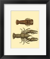 Framed Antique Lobster III