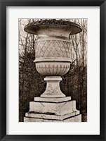 Versailles Urn IV Framed Print