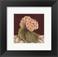 Postcard Snowball Framed Print