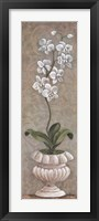 Framed Lavish Orchids I