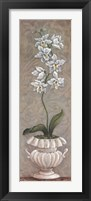 Framed Lavish Orchids II