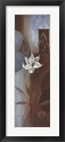 Chocolate Topaz II Framed Print