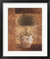 Topiary I Framed Print
